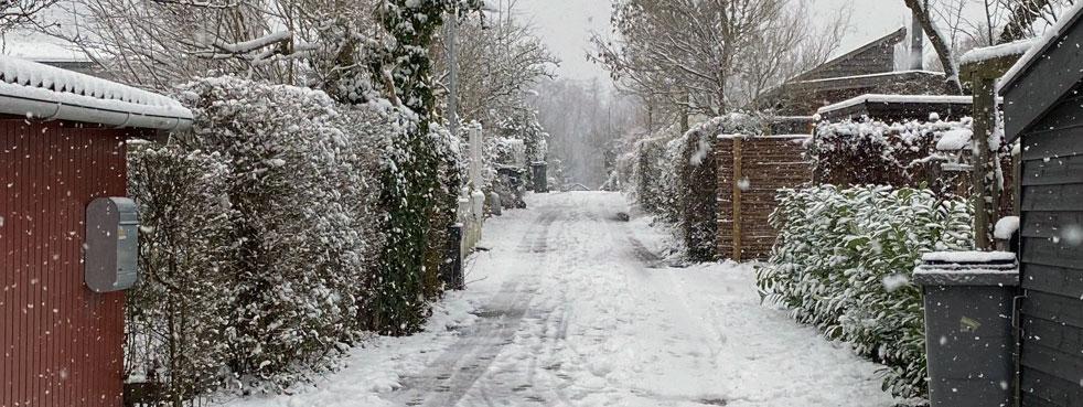 Vinter_2021_03